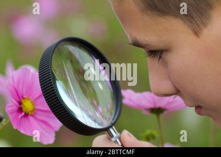 Junge betrachtet Blume durch eine Lupe, MR: Sì