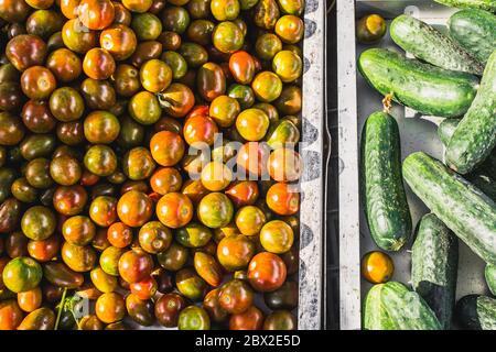 Primo piano di molti pomodori e cetrioli maturi succosi al banco - un mercato mediterraneo tradizionale - prodotti naturali selezionati di alta qualità Foto Stock