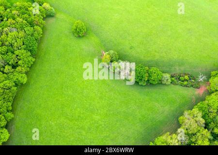 Spreeng in Devon visto su Beacon Hill vicino Exeter, Devon, Inghilterra, Regno Unito, Europa Foto Stock