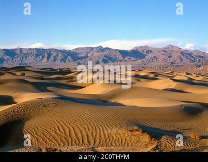 Il Mesquite dune di sabbia nel Parco Nazionale della Valle della Morte in California USA