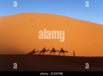 Ombra di una carovana nel deserto Erg Chebbi in Marocco Foto Stock