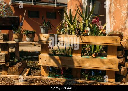 Vasi di fiori in cassa al cortile Foto Stock