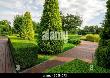 un parco con siepe di bosso e thuja sempreverde con passeggiate tortuose per passeggiate tra piante con nuvole nel cielo in estate soleggiato giorno. Foto Stock