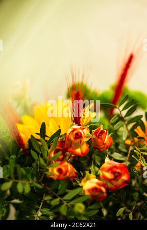 Bellissimi bouquet di colori diversi in un vaso su sfondo grigio