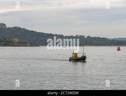 RAGAZZO TOM. Boy Tom vecchio giallo nero privato di proprietà barca da pesca ricreativa a Plymouth Sound. Conversione da vecchio rimorchiatore. Progetto di conversione Tug. Foto Stock