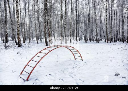 Parco giochi tra alberi alti sotto la neve. La neve è caduta sul parco giochi. Una scala coperta di neve. Foto Stock