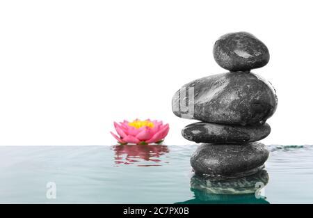 Pietre e fiori di Spa in acqua su sfondo bianco Foto Stock