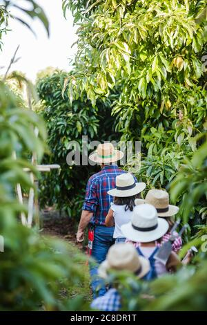 Grandfahter con gruppo di bambini in giardino Foto Stock