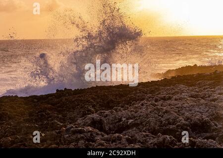 Grande onda che si schiantò contro la costa rocciosa, Grand Cayman Island