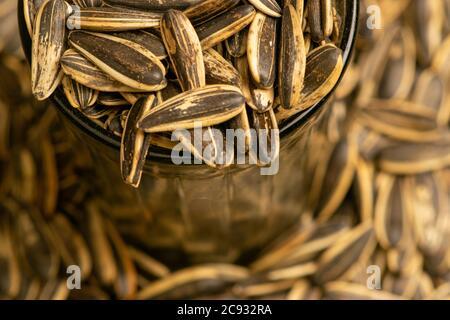 Semi di girasole fritti in una tazza di vetro e semi di girasole sparsi. Primo piano