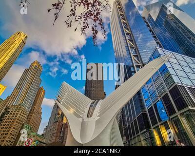 World Trade Center Transportation Hub (Oculus) nel quartiere finanziario di New York, luce diurna, vista dall'esterno ad angolo basso Foto Stock