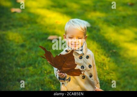 Carino capretto del sorriso che tiene i fogli dell'autunno nella natura. Autunno bambini Ritratto in autunno foglie gialle. Piccolo bambino nel Yellow Park Outdoor. Foto Stock