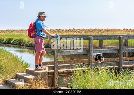 escursionista maschile in piedi a ponte di legno che attraversa il piccolo fiume con dog dunwich uk Foto Stock