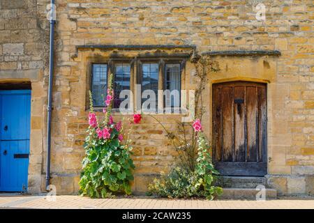 Porta anteriore in legno e bifore in pietra di un cottage con i hollyhocks rosa a rosso che crescono da un muro a Chipping Campden nel Cotswolds Foto Stock