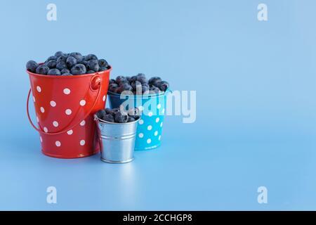 frutta e verdura, vitamina, cibi e bevande sani, concetto gastronomico - layout mirtillo viola bacche in tre piccoli secchi di metallo di diversi Foto Stock