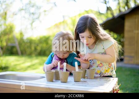 Ragazze carine che piantano semi in pentole piccole sulla tavola a. iarda Foto Stock