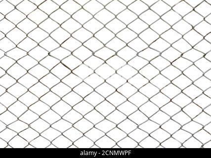 Rete di filo di ferro isolata su sfondo bianco