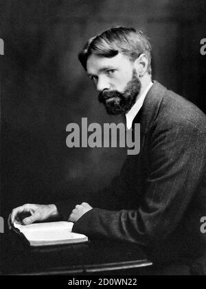 D. H. Lawrence/DH Lawrence. Ritratto dello scrittore e poeta inglese David Herbert Lawrence (1885-1930), c.1915.