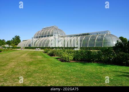 Vista prospettica della Palm House nei Royal Botanic Gardens, Kew a Richmond sul Tamigi, contro il cielo blu chiaro.