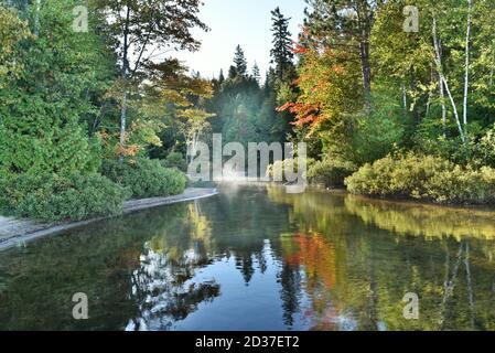 Vista mattutina dei laghi nell'Ontario settentrionale, Canada in autunno. I colori dell'autunno e la nebbia si riflettono sul lago.