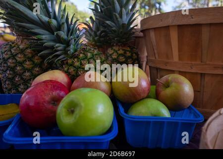 Due cestelli di plastica blu riempiti di mele fresche rosse e verdi. Ci sono più ananas interi sullo sfondo.