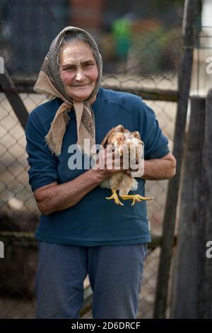 Vecchia donna contadina che tiene il suo animale domestico di pollo all'aperto Foto Stock