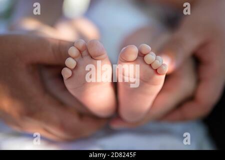 I piedi del neonato nelle mani dei genitori. Fascio solare. Primo piano Foto Stock