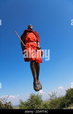 Tribù Masai di eseguire salti di danza, Masai Mara, Kenya Foto Stock