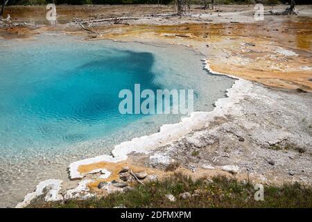Silex Spring, nella zona dei geyser Fountain Paint Pots del Parco Nazionale di Yellowstone Foto Stock