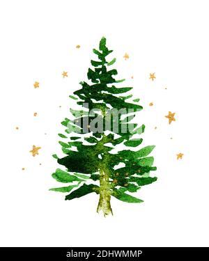 Albero di Natale verde su sfondo bianco con stelle d'oro. Disegno acquerello.