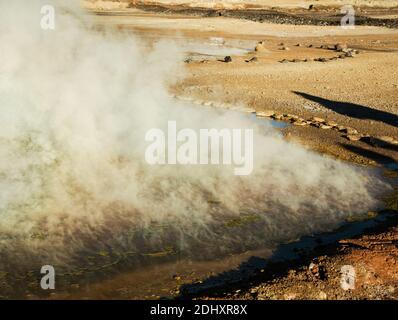Campo geyser El Tatio e area geotermica, alta nelle Ande, Atacama regione, Cile settentrionale, Sud America