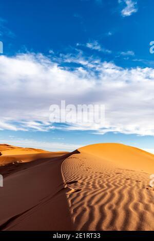 (Fuoco selettivo) vista mozzafiato di alcune dune di sabbia illuminate durante una giornata di sole a Merzouga, Marocco. Sfondo naturale con spazio di copia.