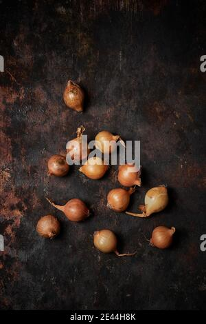 Vista dall'alto del gruppo di cipolle su legno rustico scuro sfondo