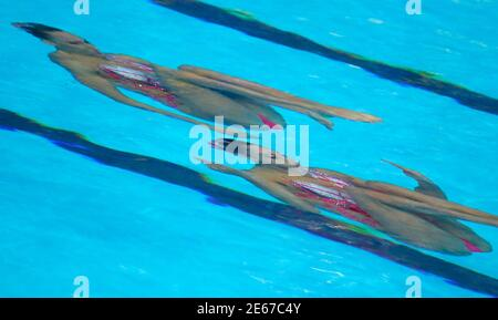 Linda Cerruti e Costanza ferro in Italia si esibiscono durante la finalissima gratuita del duetto di nuoto in occasione dei Campionati mondiali di Aquatics di Kazan, Russia, il 30 luglio 2015. REUTERS/Michael Dender
