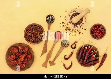 Selezione di peperoncino e spezie con peperoni, peperoncini e peperoncini in polvere in cucchiai di legno, ciotole e mortaio con pestello su ciotola