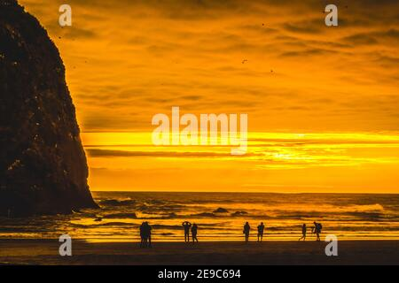 Colorato Golden Sunset Seabirds Haystack Rock Sea Stack Canon Beach Clatsap County Oregon. Originariamente scoperto da Clark di Lewis Clark nel 1805.