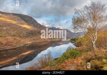 Glencoe, Scozia: Betulla e caduta sottobosco lungo il Loch Leven con riflessi di montagna Foto Stock