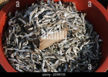 Acciughe secche in bacinella di plastica rossa in vendita all'aperto mercato Foto Stock