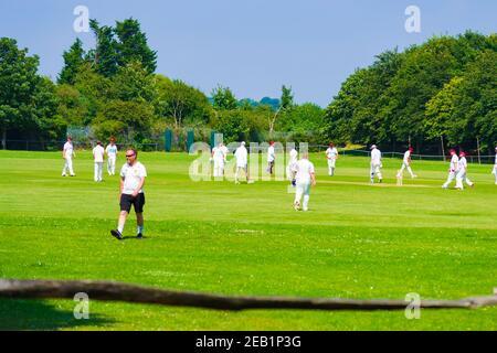 Cricket battitore colpire la palla con il wicket e il wicket-keeper in piedi dietro di lui
