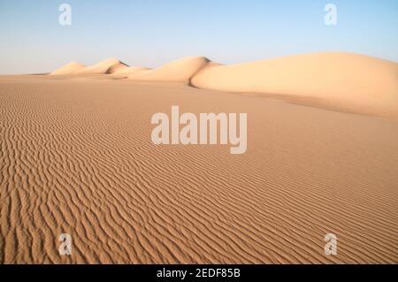 Una gigantesca duna di sabbia balenata che si estende attraverso il Grande Mare di sabbia, nella regione del deserto occidentale del Sahara, Egitto. Foto Stock
