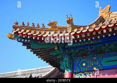 Vista ad angolo basso del tetto di un palazzo, Città Proibita, Pechino, Cina