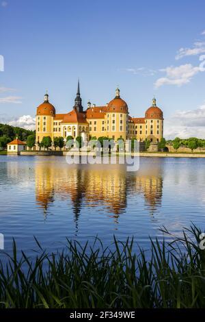 Geografia / viaggio, Germania, Sassonia, castello Moritzburg, comunità Moritzburg a Dresda, Sassonia, libertà di Panorama
