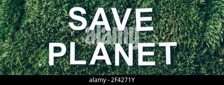 Iscrizione Salva pianeta su muschio, sfondo verde erba. Vista dall'alto. Spazio di copia. Banner. Concetto di biofilia. Natura sfondo Foto Stock