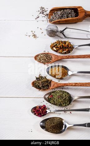 Varie erbe da tè su un tavolo di legno bianco, ben sistemate su cucchiai diversi