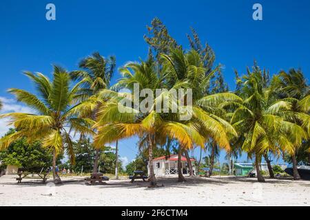 Repubblica Dominicana, Punta Cana, Parque Nacional del Este, Isola di Saona, Spiaggia al villaggio di pescatori mano Juan