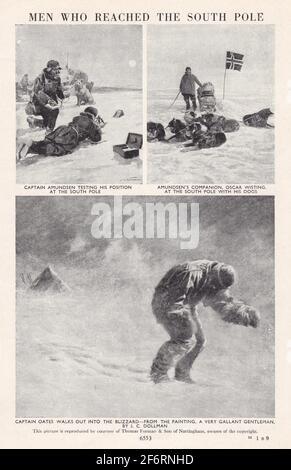Polo Sud, Antartico - Foto in bianco e nero d'epoca / illustrazioni - Amundsen / Oates / Wisting.