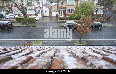 Neve che cade la mattina del 12 aprile 2021 nella periferia sud-ovest di Londra, vista sul tetto con la neve sulle tegole del tetto.
