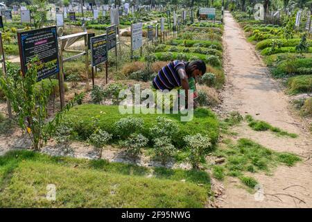 Dhaka, Bangladesh. 16 Apr 2021. Un gravedigger mantiene il cimitero di Rayer Bazar a Dhaka. (Foto di Zabed Hasnain Chowdhury/SOPA Images/Sipa USA) Credit: Sipa US/Alamy Live News