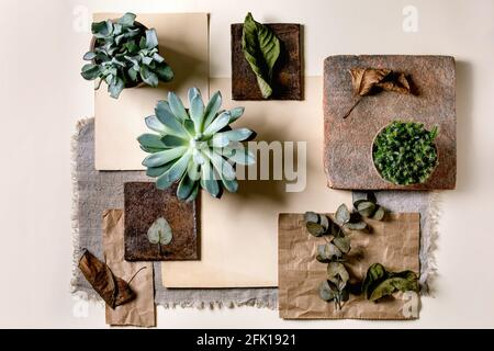 Layout creativo geometria astratta piazze vuote per natura materiali carta, tessuto, legno, pietra con piante succulente. Disposizione piatta. Spazio per qualsiasi prodotto