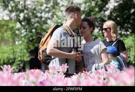 Mosca, Russia. 22 maggio 2021. Persone a Gorky Park in tarda primavera. Credit: Gavriil Grigorov/TASS/Alamy Live News
